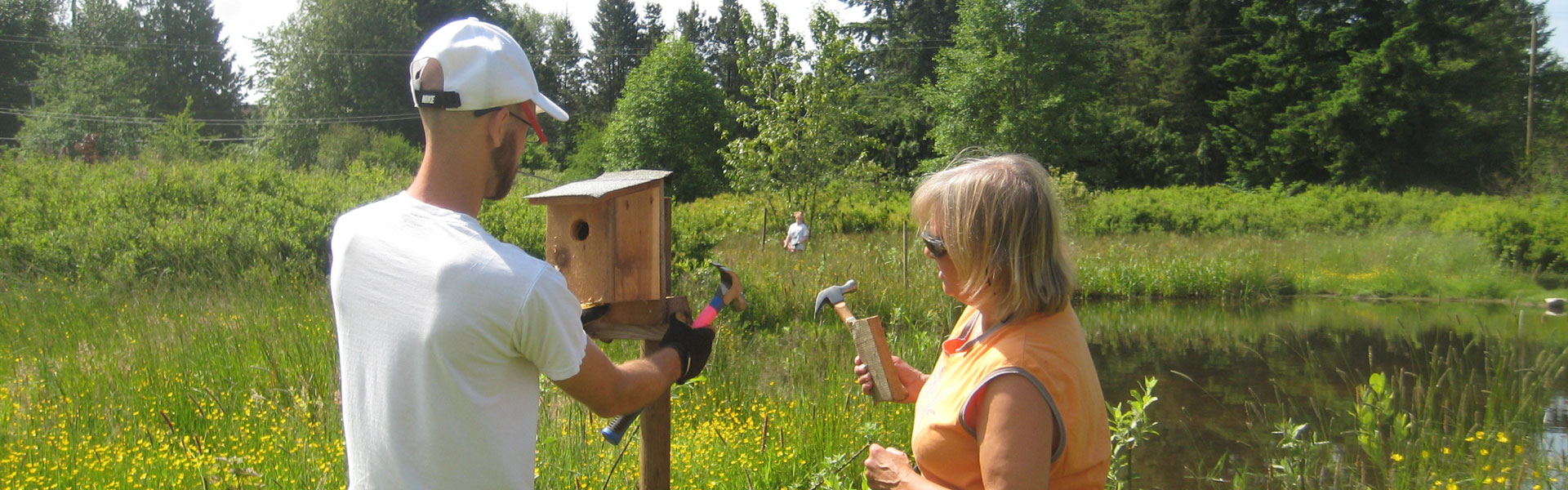 Installing-bird-boxes_photo