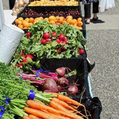 farmers market for web